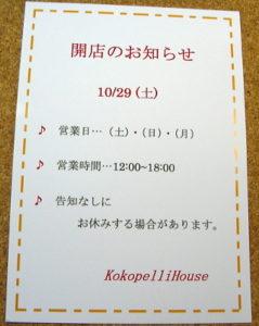p1050238